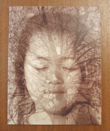 Brenda Joy Lem / Homage to the Heart■ブレンダ・ジョイ・レム コラージュ 木版画 図録 美術手帖 芸術新潮 みづゑ parkett art review_画像1