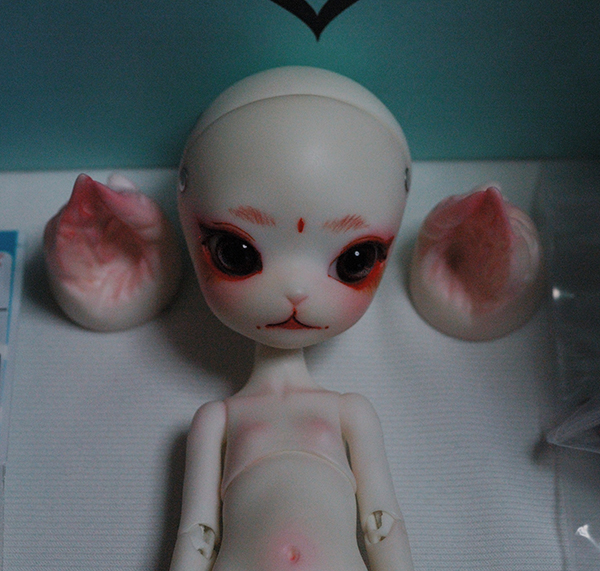 【Dollzone/Doll zone】mini kitty / minikitty 旧白肌 フルセット(オーダーメイク) + ピコニーモ服等 美品【送料無料】_画像3