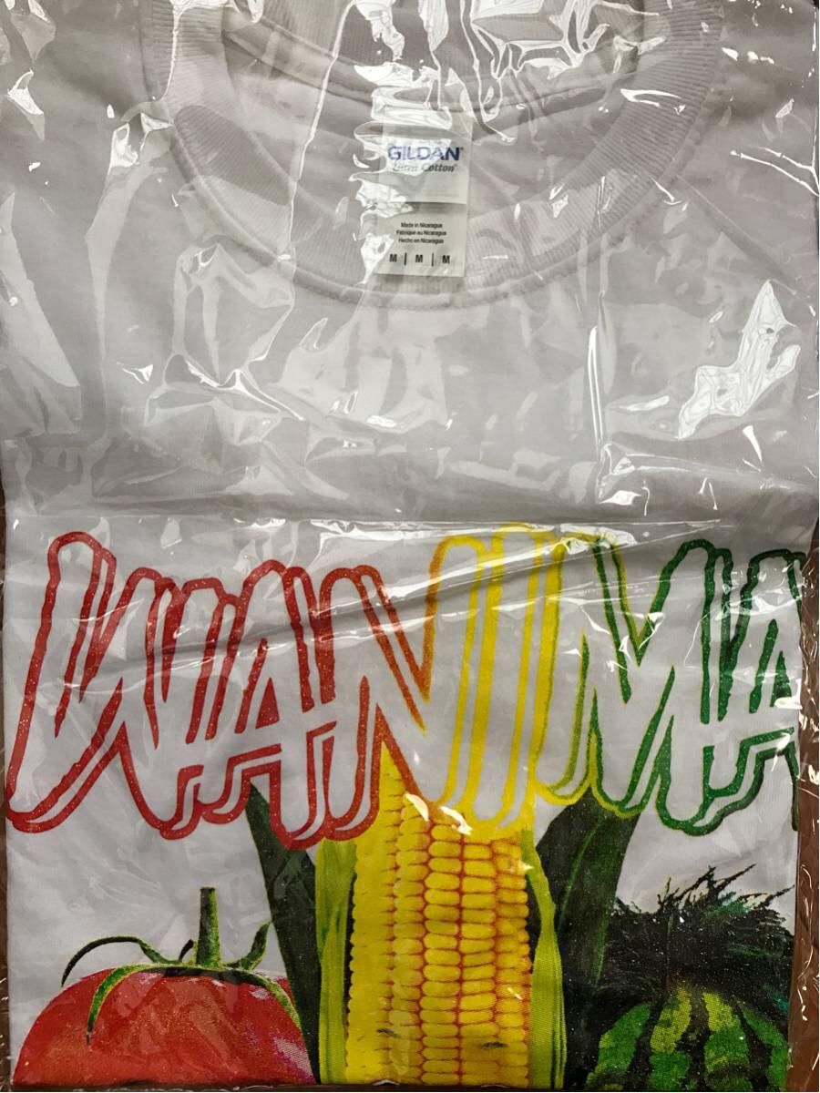 【WANIMA TシャツMサイズ】野菜Tシャツホワイト ライブグッズの画像