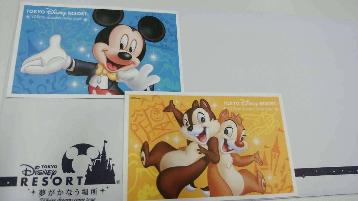 東京ディズニーランド ディズニーシー パスポート チケット 大人2枚