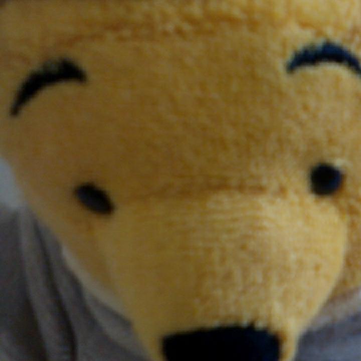 u345♪Disney くまのプーさん パジャマスタイル グレー ぬいぐるみ ディズニーグッズの画像
