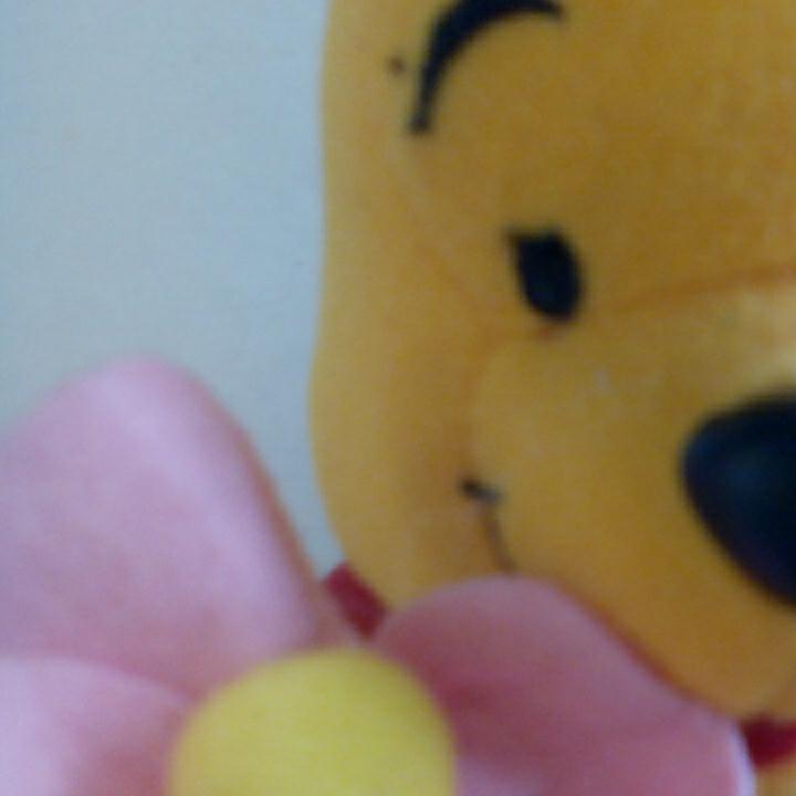 u347♪Disney くまのプーさん 花持ち ぬいぐるみ ディズニーグッズの画像