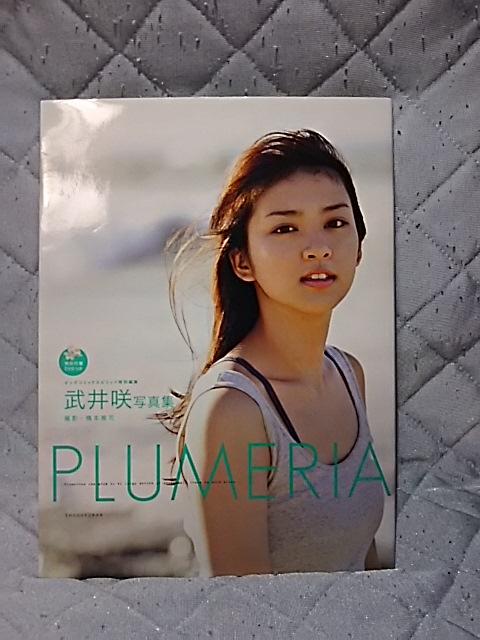 武井咲 写真集 Plumeria DVD付 グッズの画像
