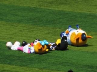 10月15日(日)甲子園☆阪神VS横浜☆クライマックスシリーズ☆レフト☆ペア☆LAWSON発券