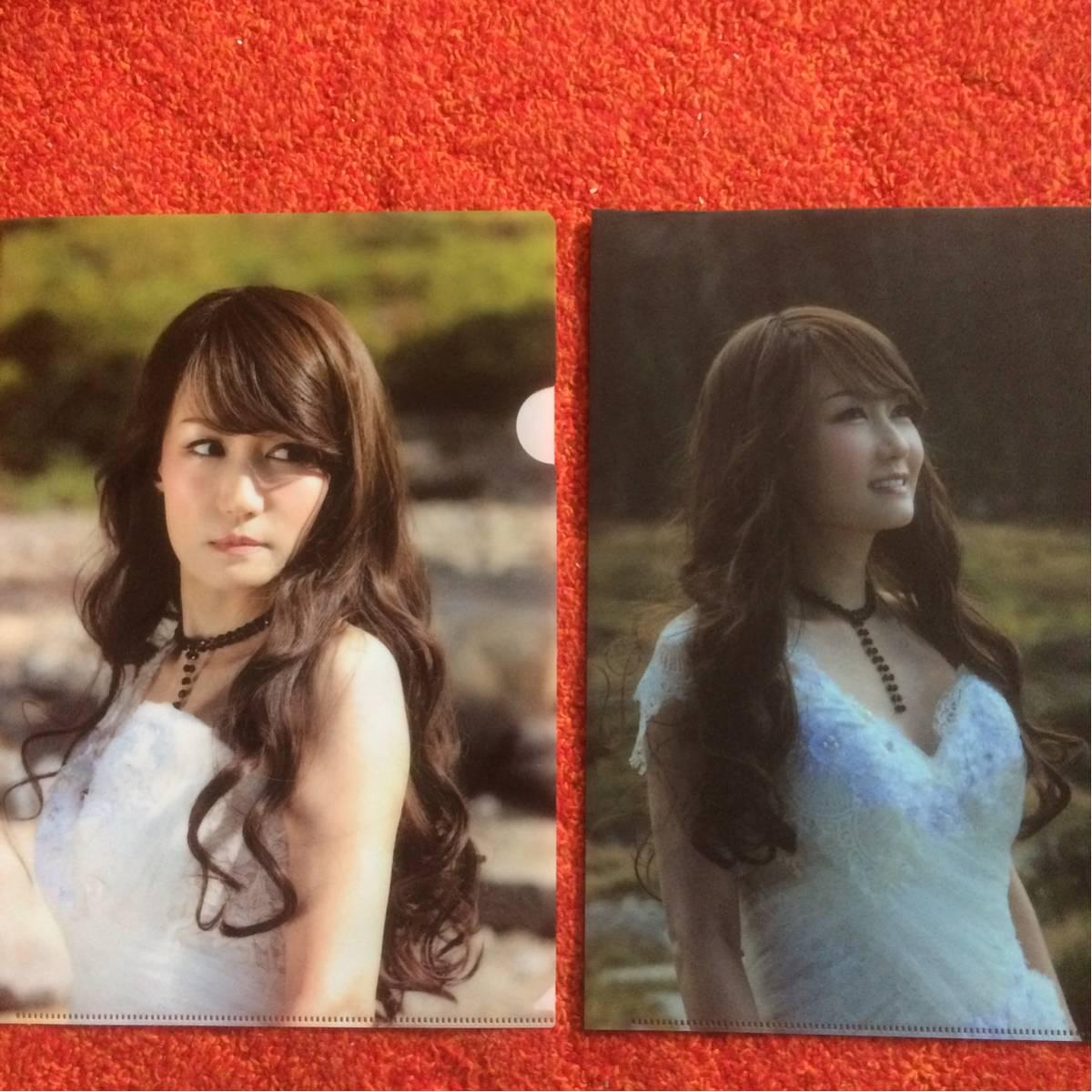 # 浜田麻里さん クリアファイルとポスター ライブグッズの画像