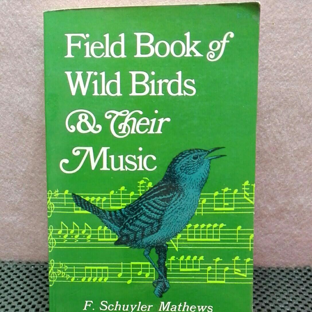 field book of wild birds 洋書 ヤフオク