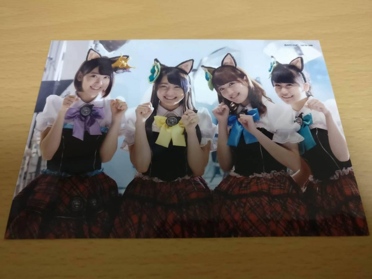 AKB48 宮脇咲良 小嶋真子 木崎ゆりあ 加藤玲奈 DVD特典 公式生写真