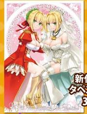 comic1☆12 comic1 コミ1 Digitallover なかじまゆか FGO fate/grand order Wネロ B2タペストリー グッズの画像