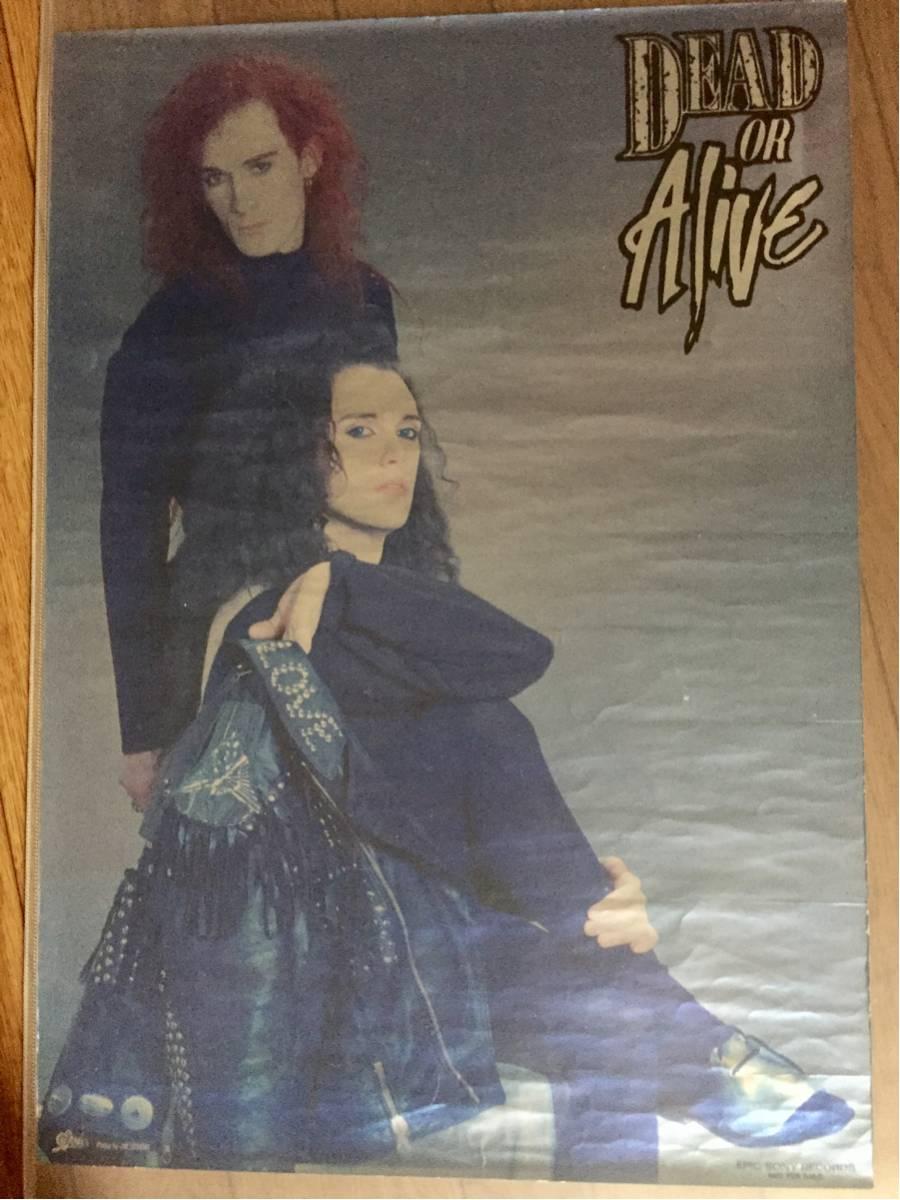 デッド・オア・アライヴ DEAD OR ALIVE RIP IT UP購入特典キラキラポスター