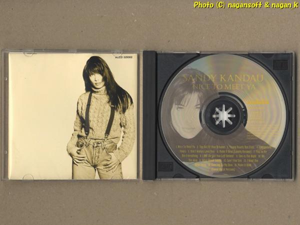 ★即決★ SANDY KANDAU (サンディ・カンドゥ) / NICE TO MEET YA -- 1995年リリース、ファーストアルバム。ダンスとバラード系の構成曲_画像3