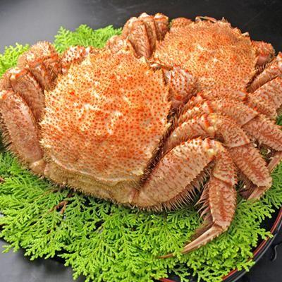 最高級品 大きなボイル毛ガニ 特大サイズ 5kg (6尾入り)_最高級品