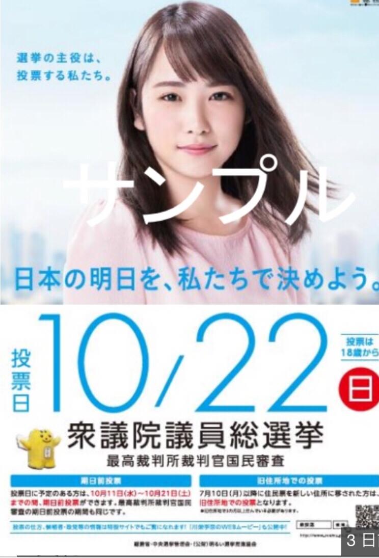 川栄李奈 衆議院議員総選挙 ポスター(B2サイズ(515×728mm) 1枚とA4サイズ1枚新品未使用) 計2枚非売品