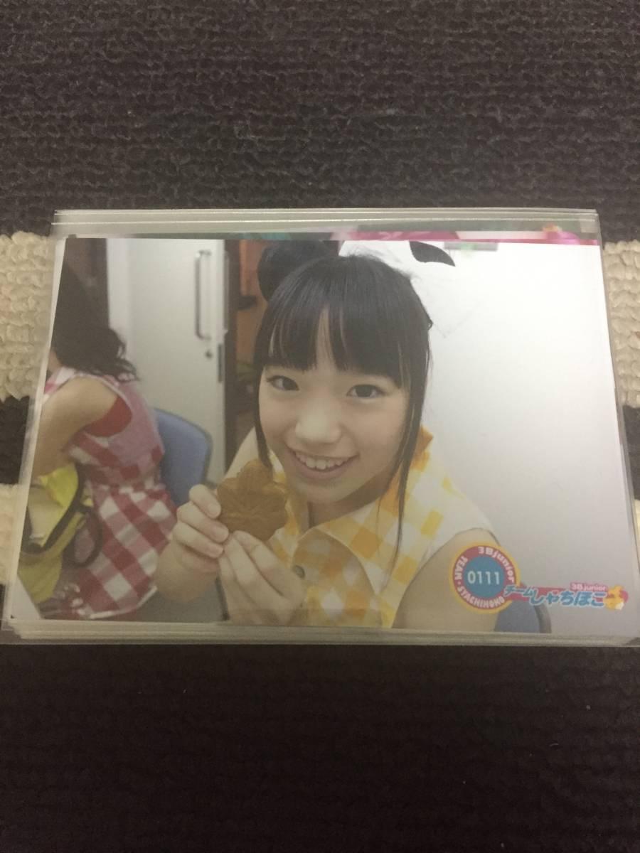 チームしゃちほこ 生写真 No.111~270  ライブグッズの画像