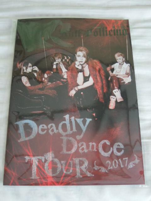 極美品 ほぼ新品 Anli Pollicino アンリポリチーノ 「Deadly Dance TOUR」 パンフレット