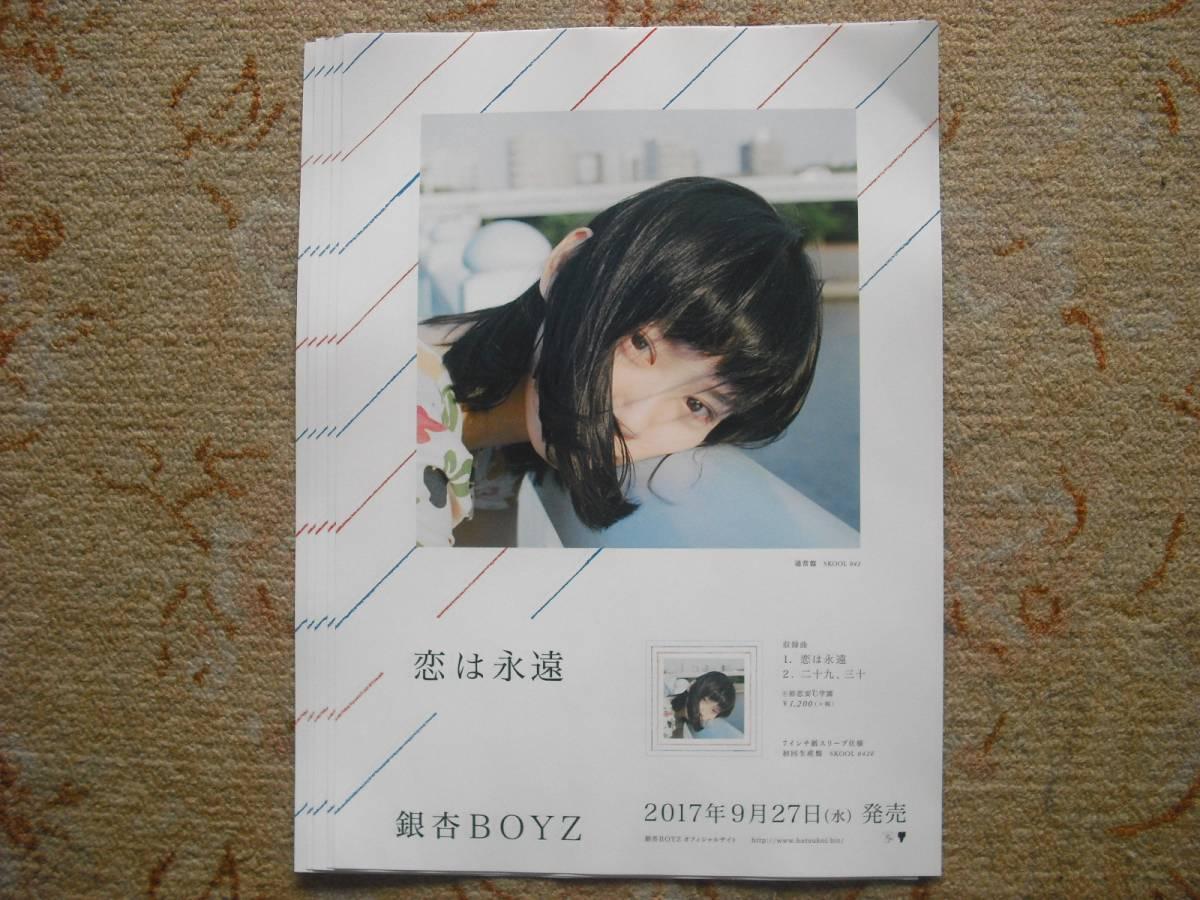 銀杏BOYZ フライヤー5枚 チラシ フリーペーパー 銀杏ボーイズ 峯田和伸
