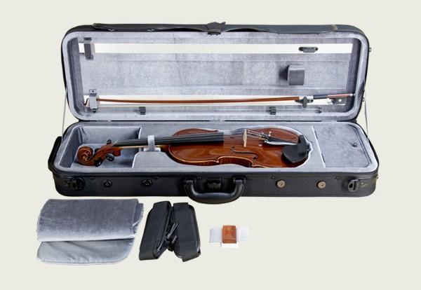 バイオリン 鈴木の情報