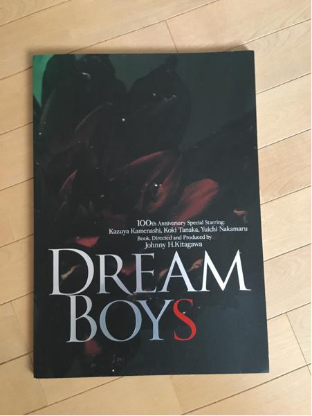 DREAM BOYS2011パンフレット