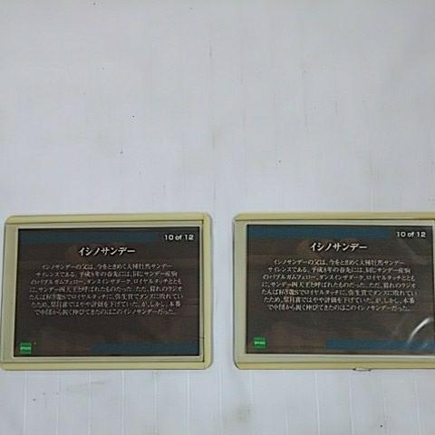 イシノサンデー ホースコレクション 競馬カード ジョッキーカード 2枚セット _画像4