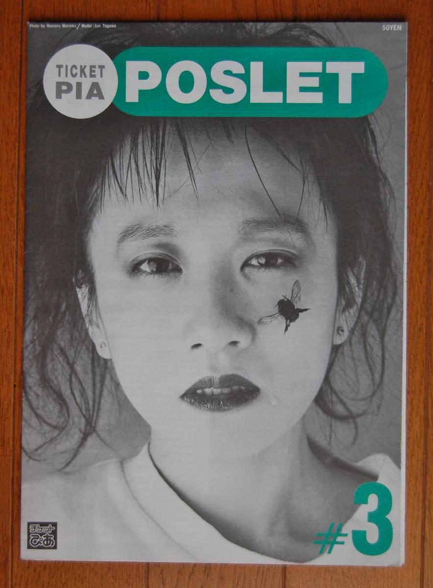 戸川純 音楽情報冊子 インタビュー 1987年