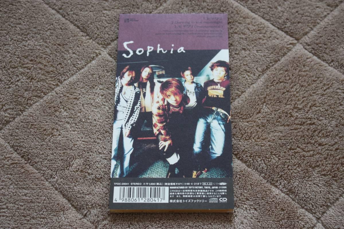 SOPHIA ヒマワリ 8cmCDシングル ソフィア プラケース付_画像2