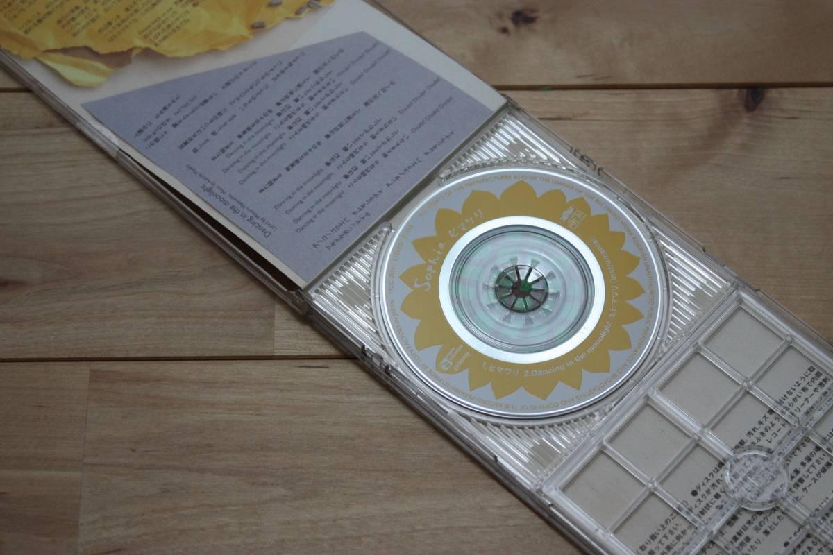 SOPHIA ヒマワリ 8cmCDシングル ソフィア プラケース付_プラケースが付きます