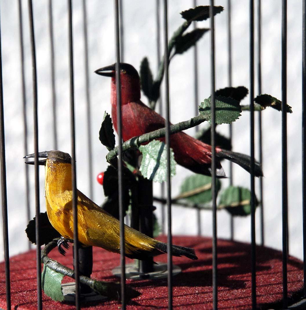 ゼンマイ仕掛け 2羽の小鳥2重奏カラクリ 鳥籠 C273_画像6