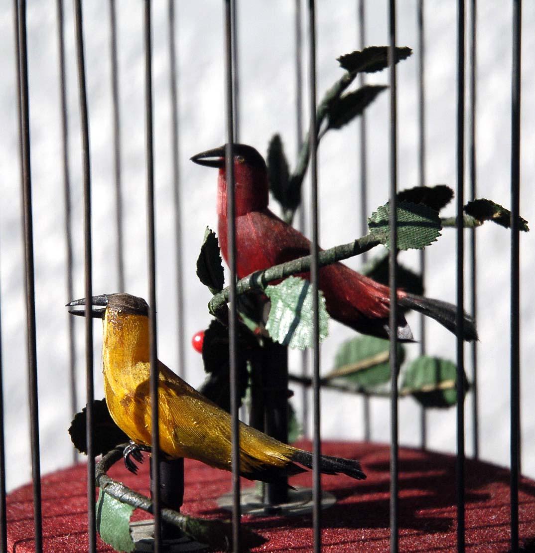 ゼンマイ仕掛け 2羽の小鳥2重奏カラクリ 鳥籠 C273_画像2