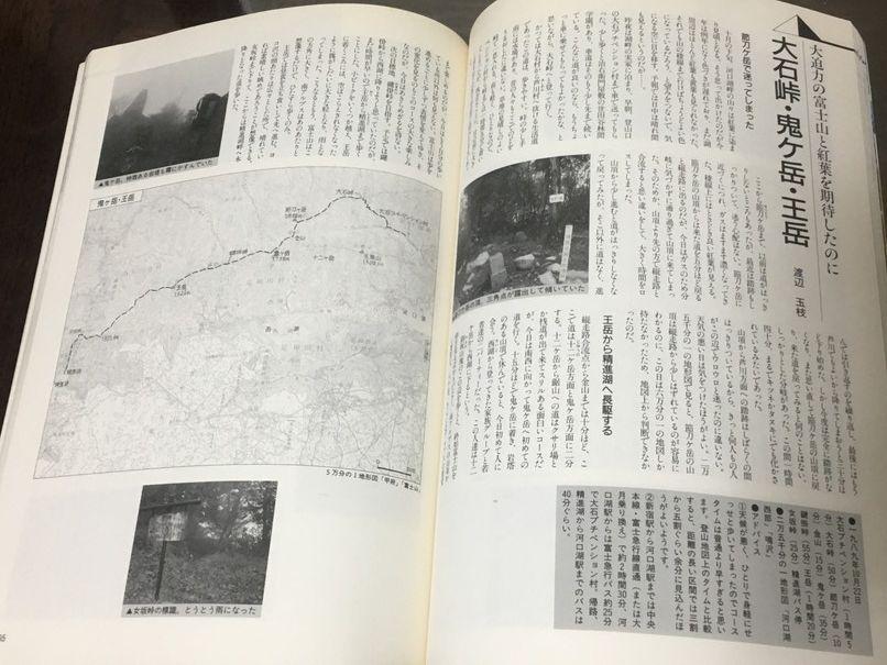 遊歩百山 1~8、10~12 山と渓谷社・森林書房_画像5
