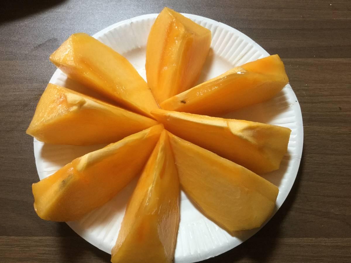 柿の王様 八幡浜名産・富士柿 5kg 柿のマンゴー!