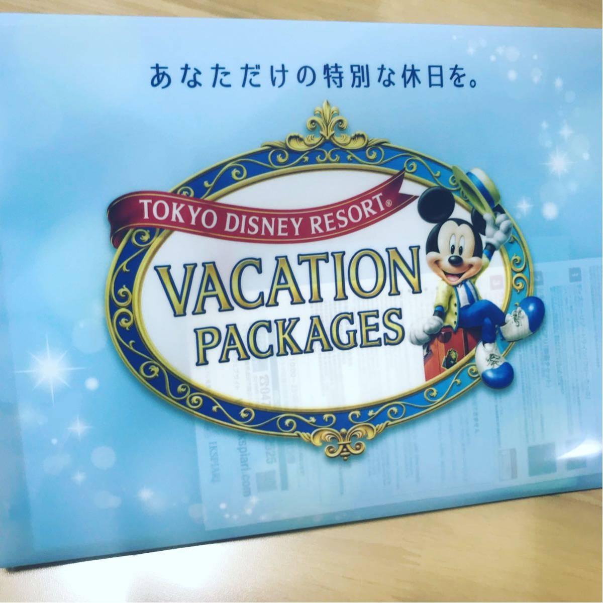 ディズニー 2day パスポートスペシャル 2枚 11/25.26 /【buyee