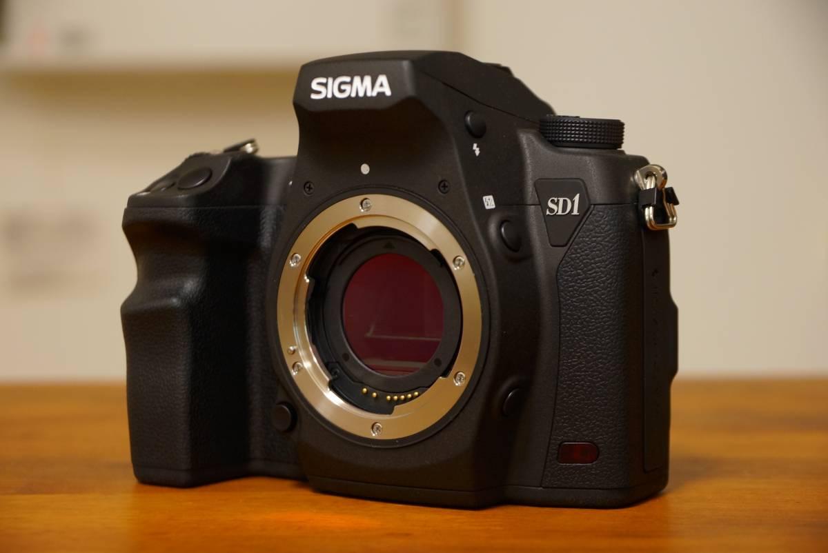SIGMA シグマ SD1 Merrill 純正レリーズCR-21 純正予備バッテリーBP21付き