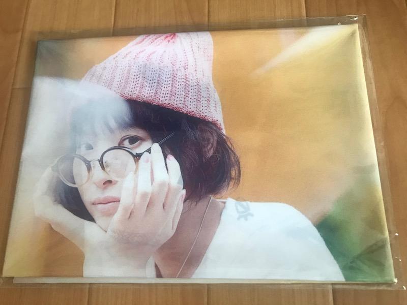 南條愛乃 サントロワ ゲーマーズ店舗特典 布ポスター