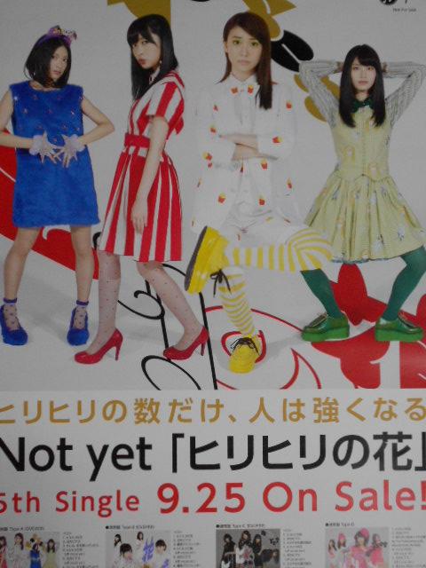 ☆Not yet AKB48 告知 B2 ポスター 「ヒリヒリの花」 未使用