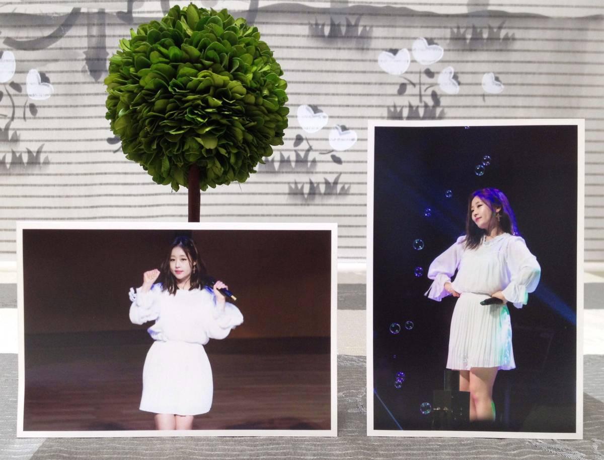 Lovelyz★Baby Soul★2017年 6月★Sea History Concert★韓国 FC生写真12枚