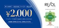 リゾートソリューション 株主優待券12000円分 送料込