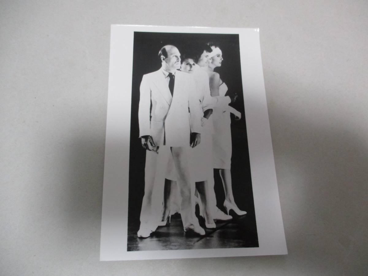 宣伝用写真 雑誌用写真 マンハッタン・トランスファー The Manhattan Transfer ジャズ JAZZ