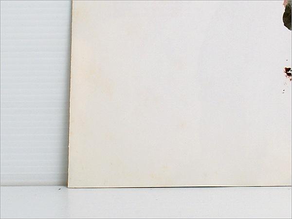 東芝EMIの再発・白ラベル見本盤・LPレコード● OK / RCサクセション ( 忌野清志郎,仲井戸麗市, RC SUCCESSION, OH! BABY, 指輪をはめたい )_画像6