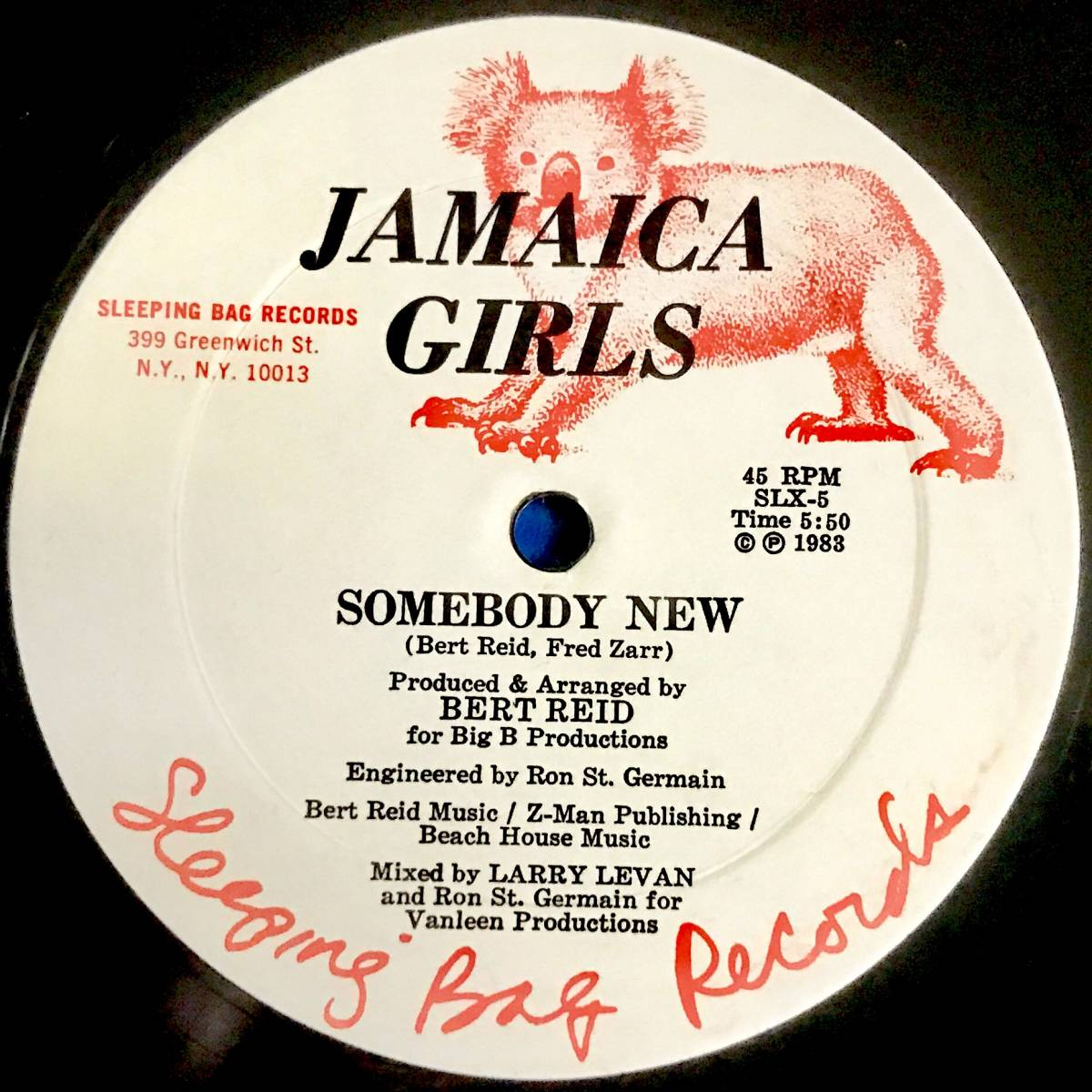 【DISCO】JAMAICA GIRLS//NEED SOMEBODY NEW//12INCH VINYL/US/LARRY LEVAN/LOFT/GARAGE_画像2