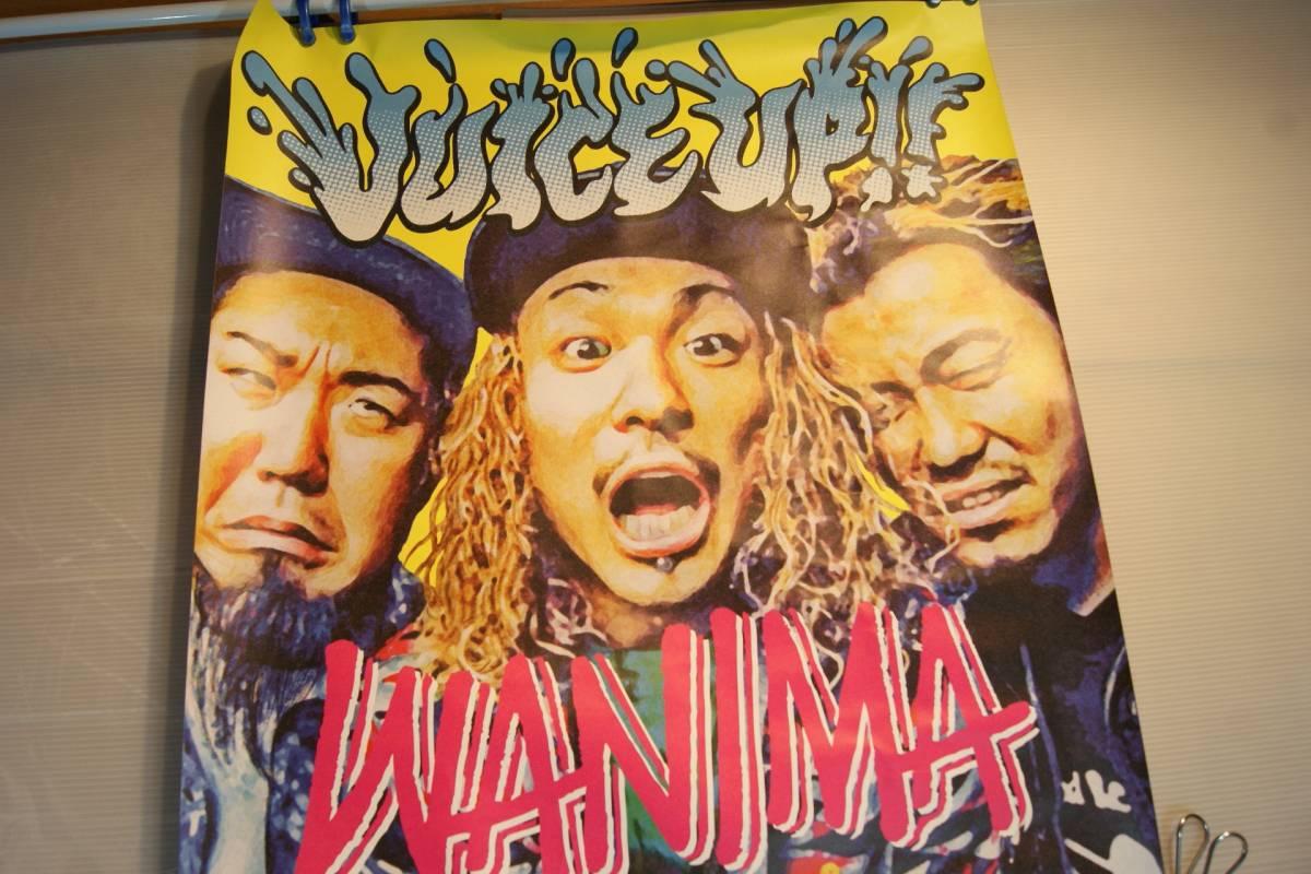 新品 WANIMA JUICE UP!! 非売品 B2サイズポスター/ ワニマ ピザオブデス Pizza OF DEATH