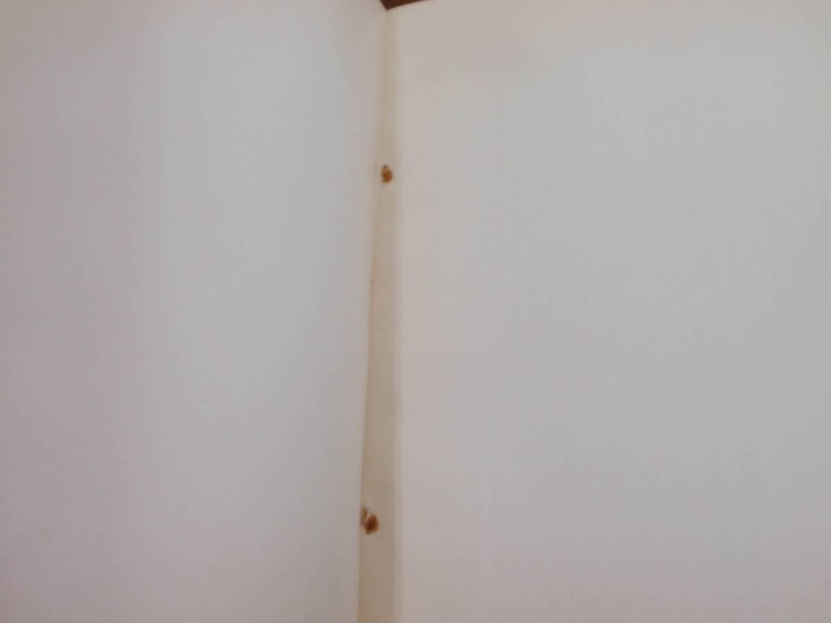【希少・入手困難】 赤軍 共産主義者同盟赤軍派 政治理論機関誌総集 _画像3