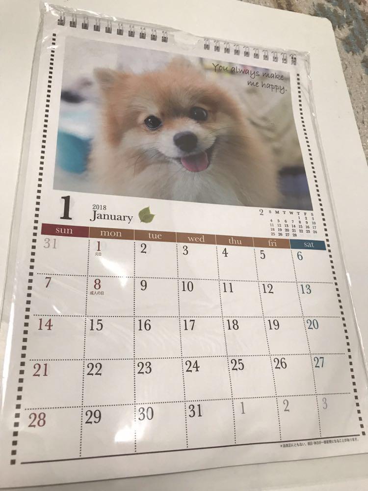 訳あり kyowa 2018 A4 壁掛け ハンガー付き カレンダー DOG 犬 動物_画像1