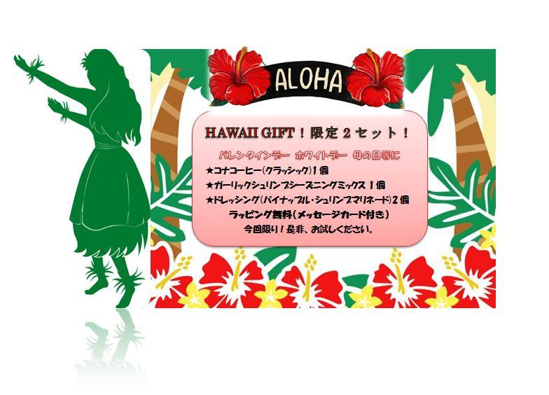 HAWAII GIFT�I�n���C�M�t�g�@�h���b�V���O���R�[�q�[���V�[�Y�j���O ����Z�b�g �I��̓��@���̓��@�v���[���g Image1