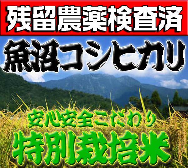 【平成29年産米】こだわり特別栽培米!!新潟県南魚沼産コシヒカリ玄米30kg(精米無料)200項目残留農薬証明書付