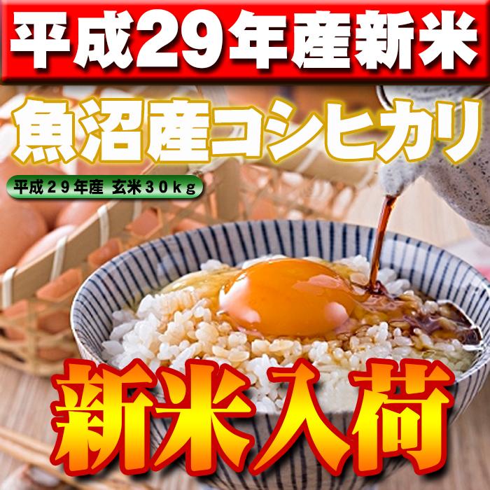 【平成29年産米】新潟県魚沼産コシヒカリ玄米30kg(精米無料)味・ツヤ・香り全て最高ランクです