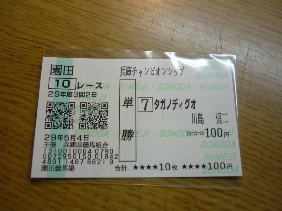 タガノディグオ 2017年 兵庫チャンピオンシップ 現地購入単勝馬券 おまけ付