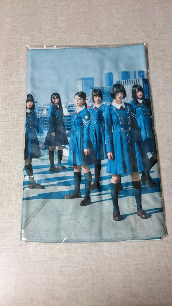 【新品】欅坂46 ラグーナテンボス限定 フェイスタオル サイレントマジョリティー