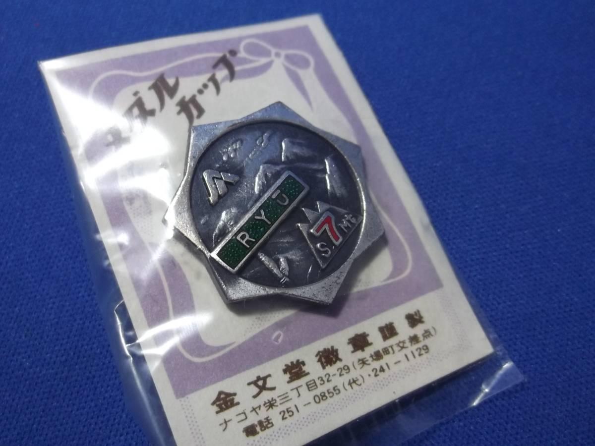 謎の記念徽章(メダル・ピンバッジ)未使用品 鉄道関係?_画像1