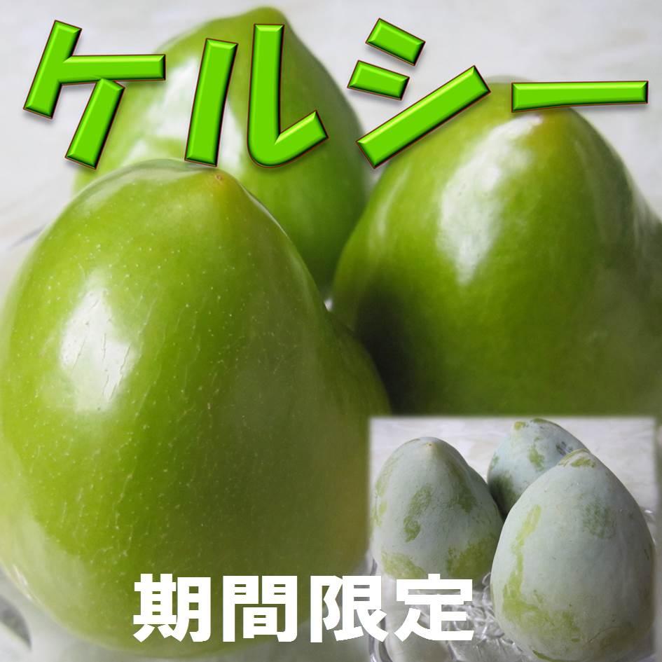 d【予約】希少価値の高い高級プラム ケルシー 500g 3〜4玉 【山梨県産】