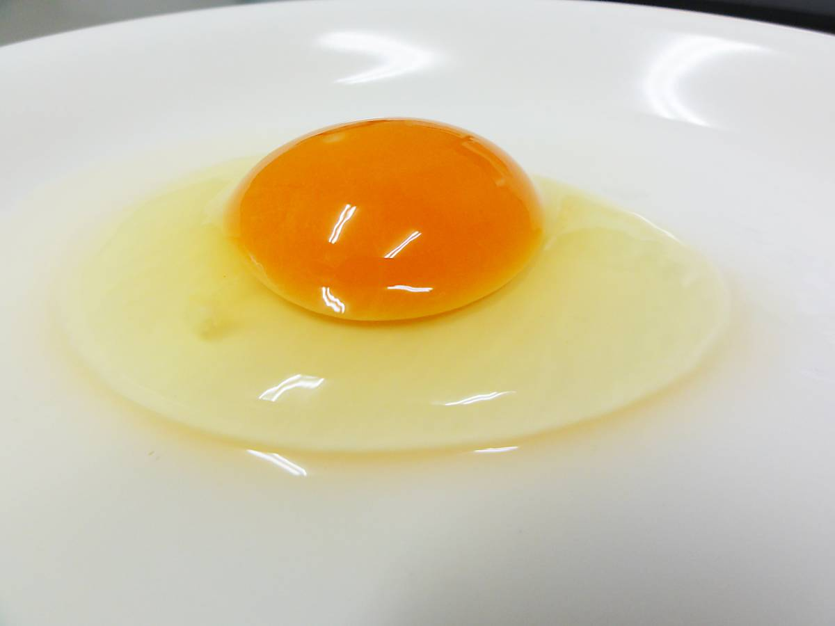 贈り物に最適 送料込(北海道・東北を除く)1日限定20箱 ネッカリッチ赤卵「児湯一番」 2箱(40個入)_画像3