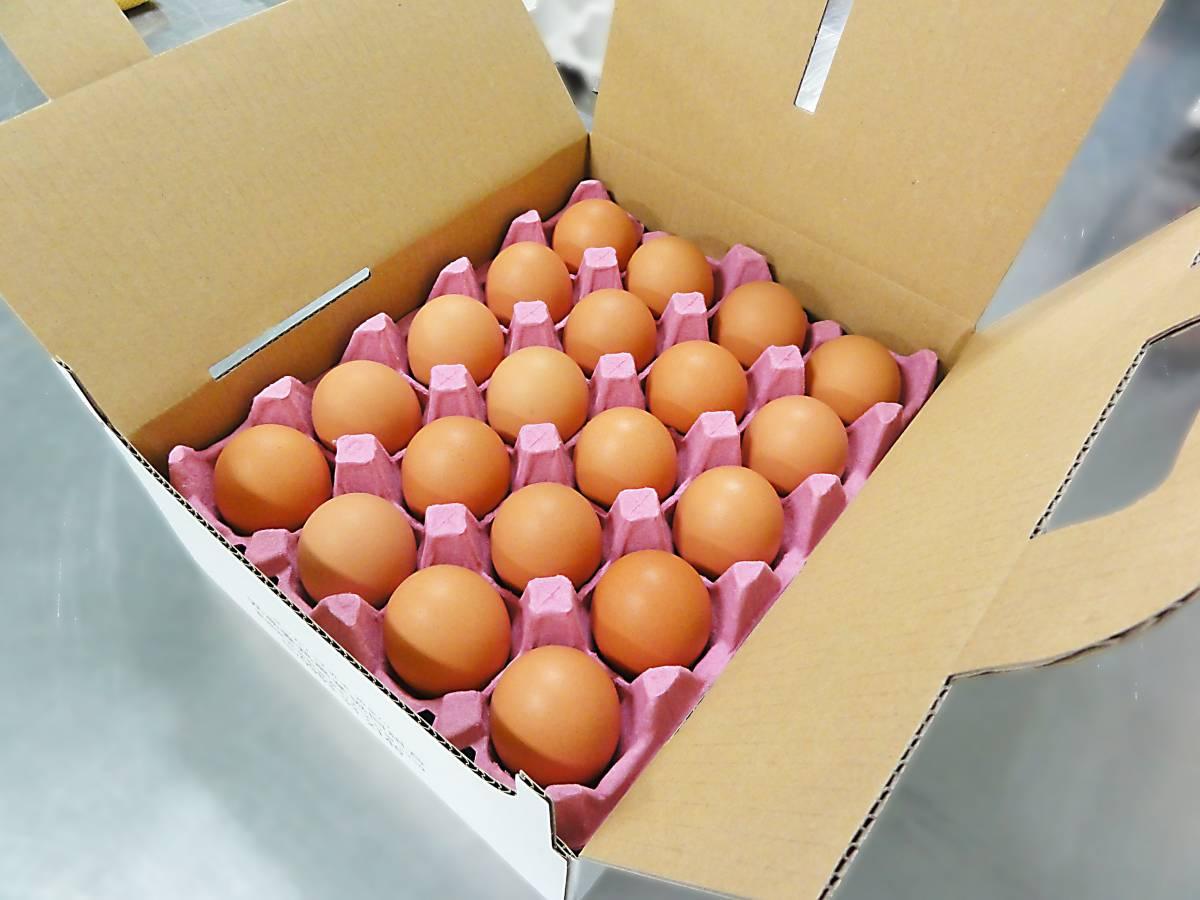 送料込み(北海道・東北を除く) 贈り物に最適!! ネッカリッチ赤卵「児湯一番」 限定20箱/日 3箱60個入_画像4